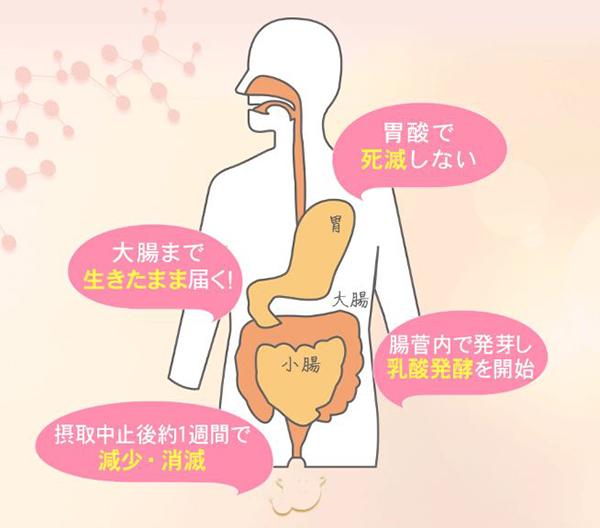 ビオリーナ 評判 口コミ